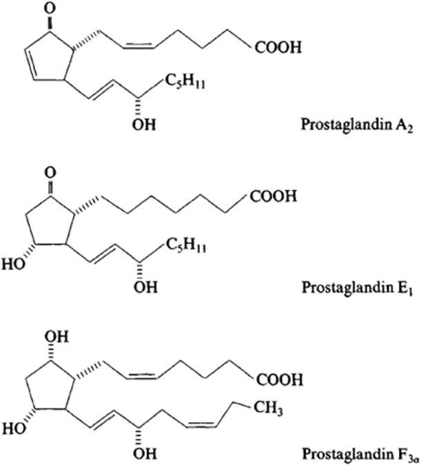 гормоны почек и их функции простагландины