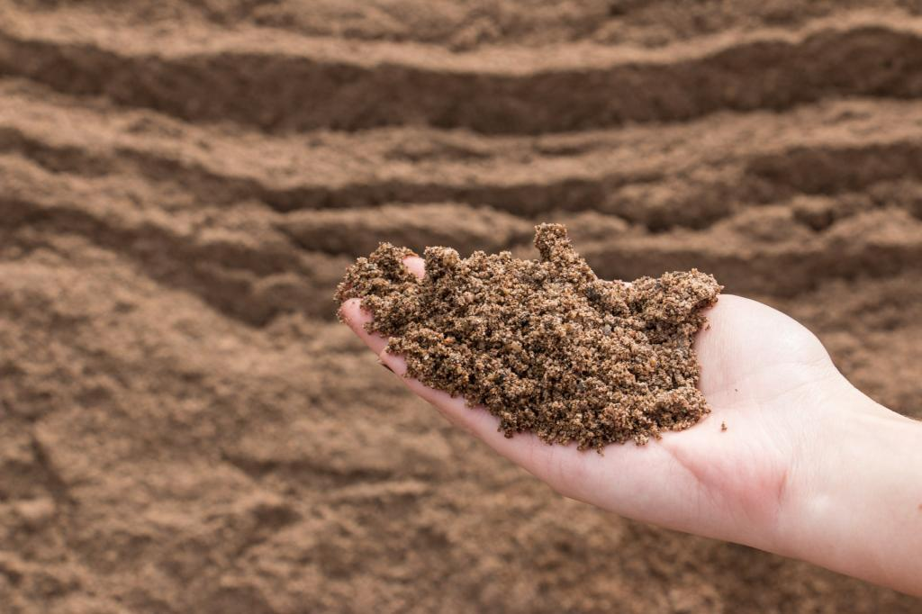 речные пески
