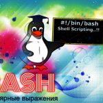 Регулярные выражения Bash: руководство по созданию, применение, примеры