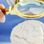 Глисты в мозге человека: симптомы и лечение