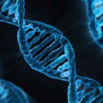Молекулярные компьютеры: характеристики, история создания