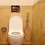 Гигиенический душ скрытого монтажа: обзор, установка, подключение
