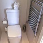 Интерьер туалета в квартире: идеи, варианты отделки и оформления