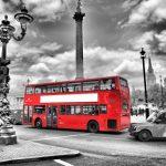 Лучший ресторан Лондона: обзор лучших заведений, интерьер, меню, фото и отзывы