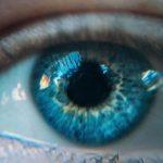 Иннервация и кровоснабжение глаза