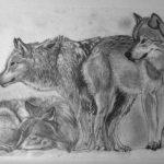 Рассказ Л. Н. Толстого «Как волки учат своих детей»