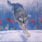 Охота на волков: почему волки боятся красных флажков