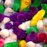 Цветные цыплята как пасхальная традиция